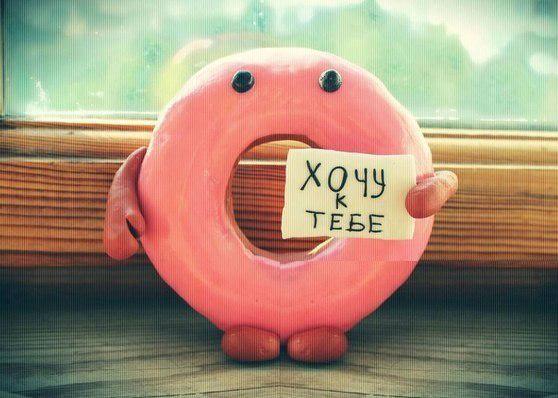 Днем благодарения, картинка смешной пончик