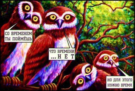 Порошенко и руководство ВКУ обсудили дальнейшие пути отстаивания интересов Украины в мире - Цензор.НЕТ 6360