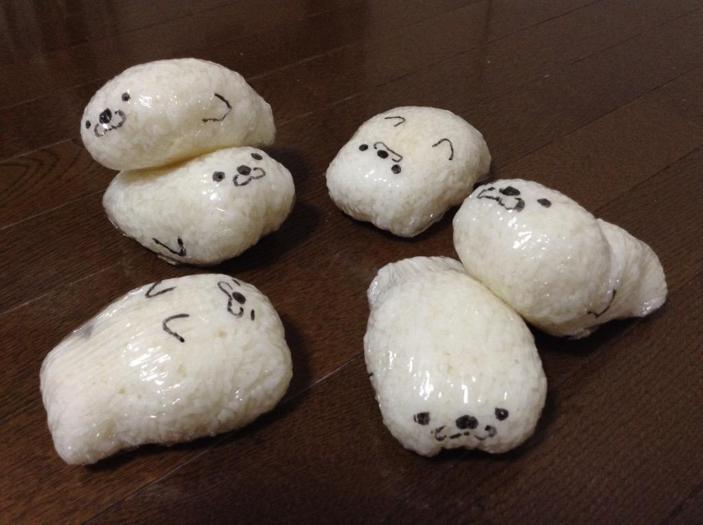 ゴハンアザラシを冷凍庫で飼っています。 pic.twitter.com/PmMkEO52B6
