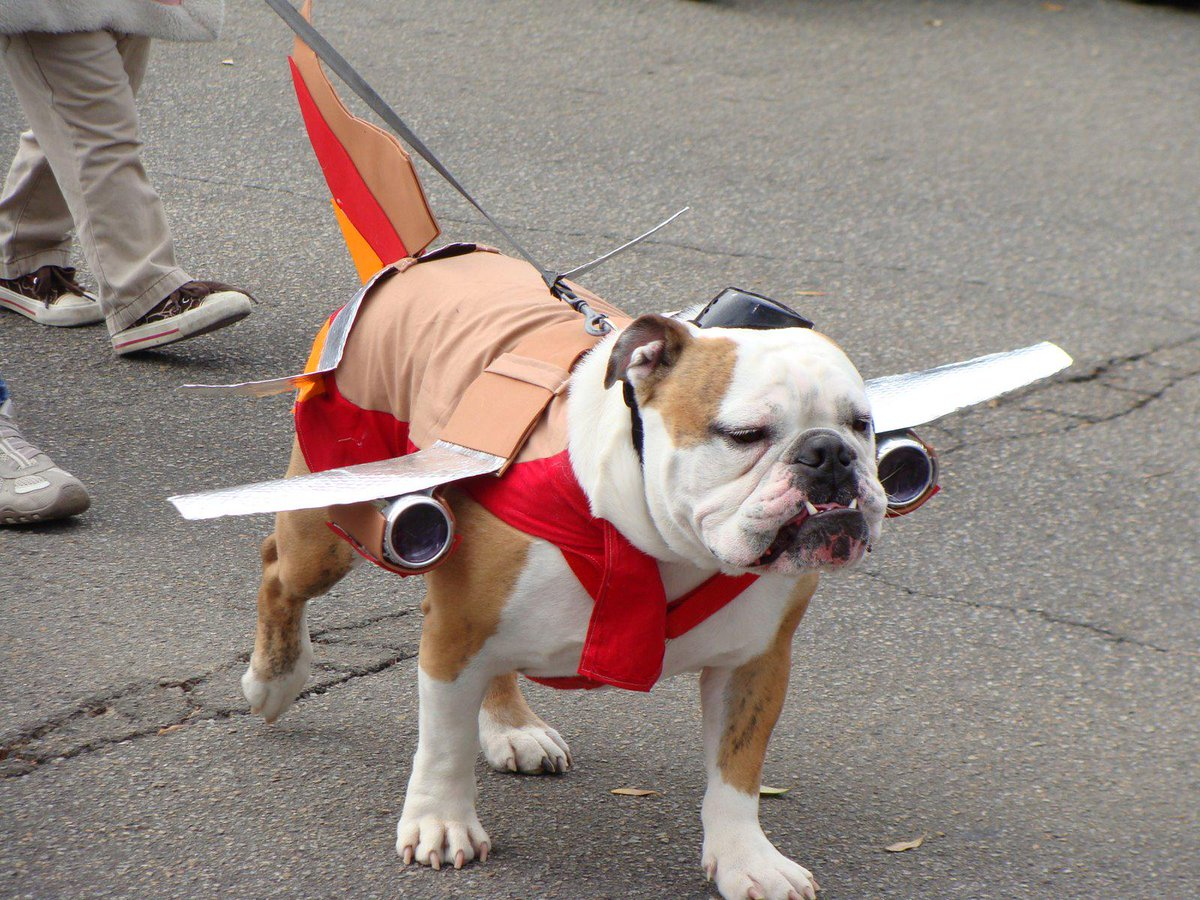 Don't make me engage the afterburner http://t.co/sDKOmOcUeG