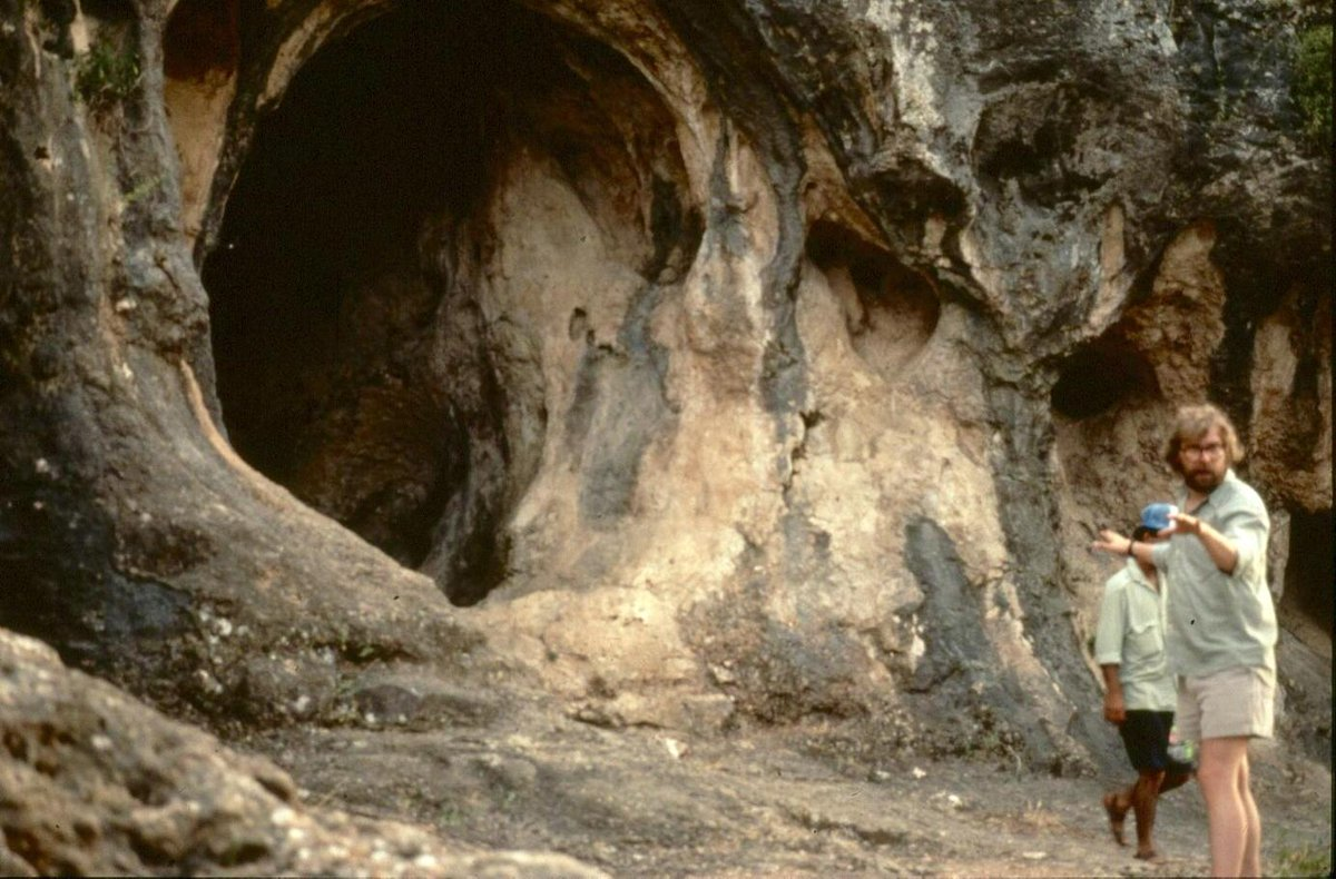 Qafzeh cave dating quotes