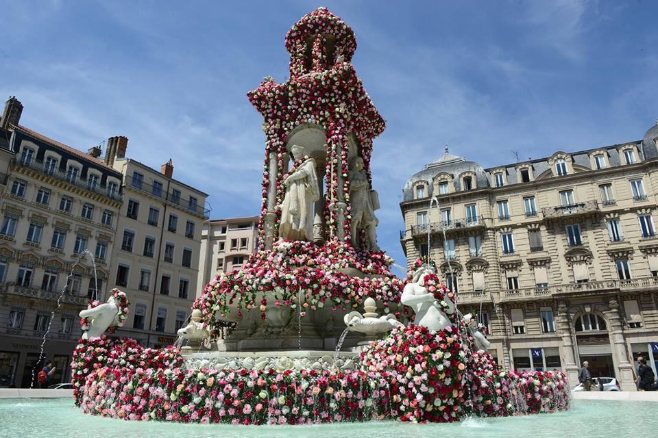 Festival de la Rose place des Jacobins à Lyon