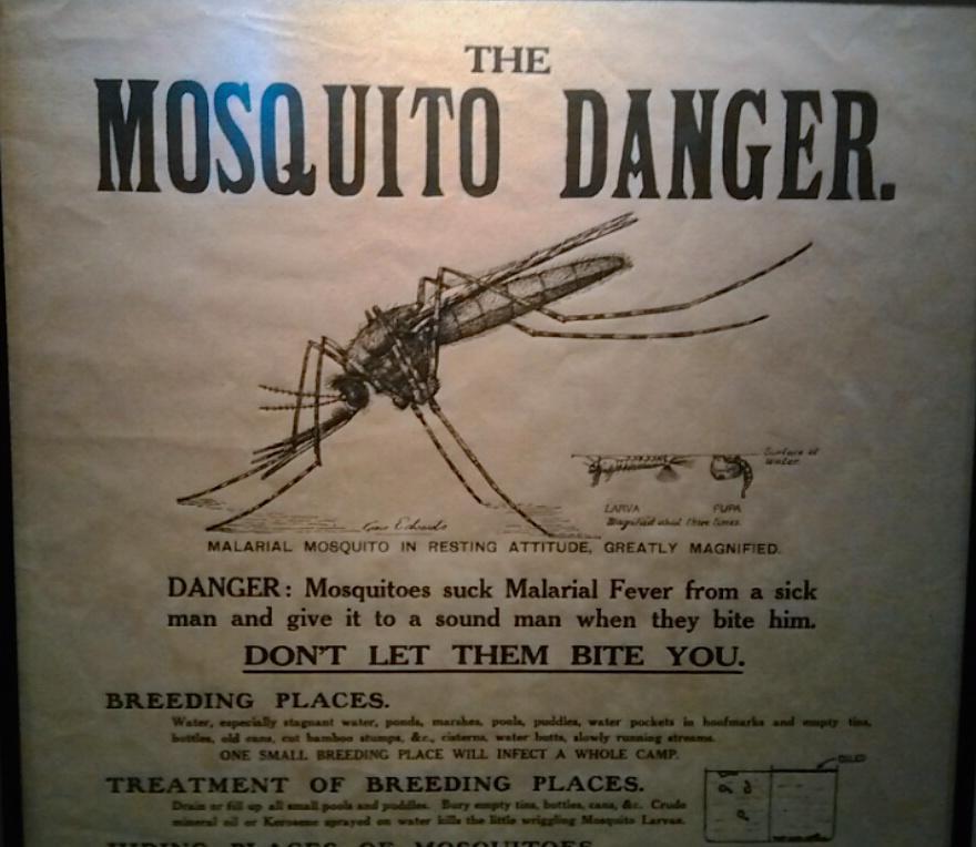 "Cartel ""The mosquito danger"" del Museo de Ciencias de Londres #microMOOC http://t.co/e3SrJYQkoq"