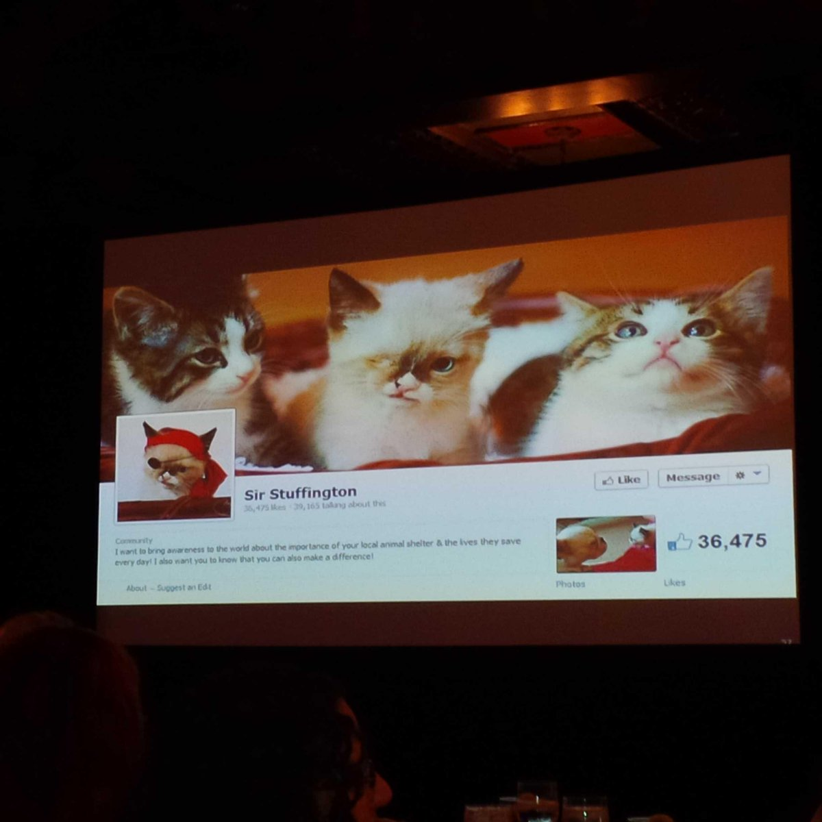 Sir Stuffington the cat shows power of using networks & relationships to bring change. @Celgene #patientspartners. http://t.co/IwYK20uUr5