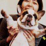 菊池亜希子のツイッター