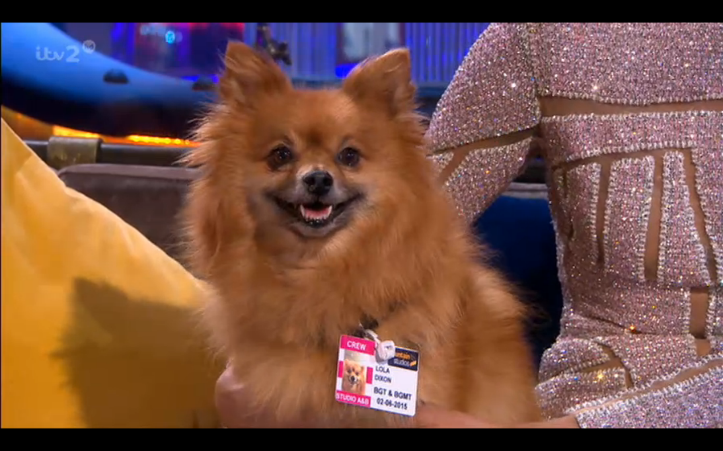 """@itv2: Lola's got that Friday feeling 🐶 @AleshaOfficial #BGMT http://t.co/hVqFFXHLOa"" Lola is a superstar! 💎"