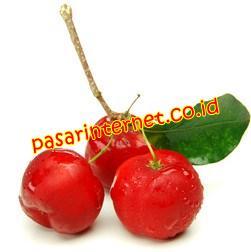 Acerola kandungan dalam amazon berries