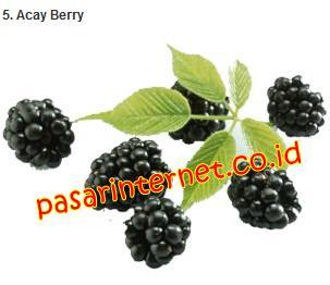 Kandungan Acay Berry dalam Amazon Berries