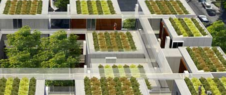 France Declares All New Rooftops Must Be Topped With Plants Or Solar Panels  http://t.co/AfwWHpEOaN http://t.co/khJHXkCkkm