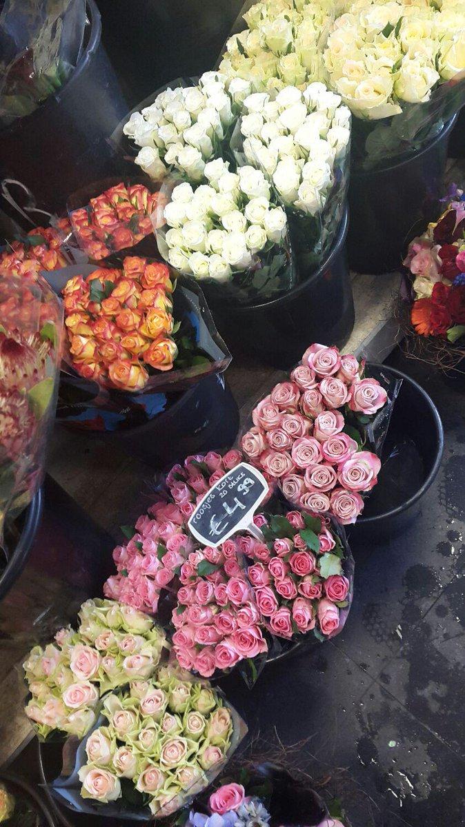Herman Hofman On Twitter Carmelita Is Aan Het Naaien Fleur Stuurt