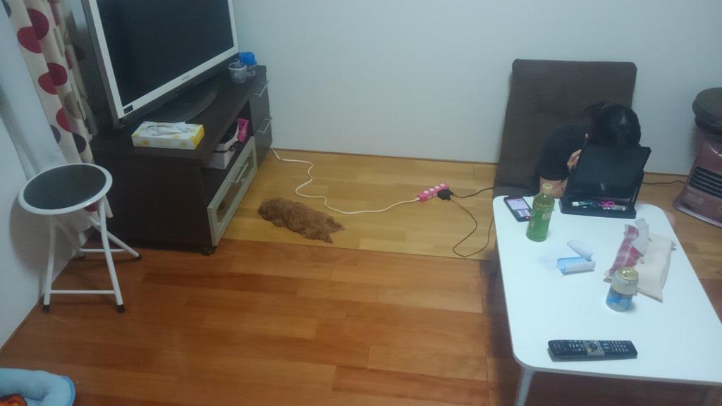 モップの先の部分だけ落ちてると思ったらうちの犬だった pic.twitter.com/sLiXWm9JJK