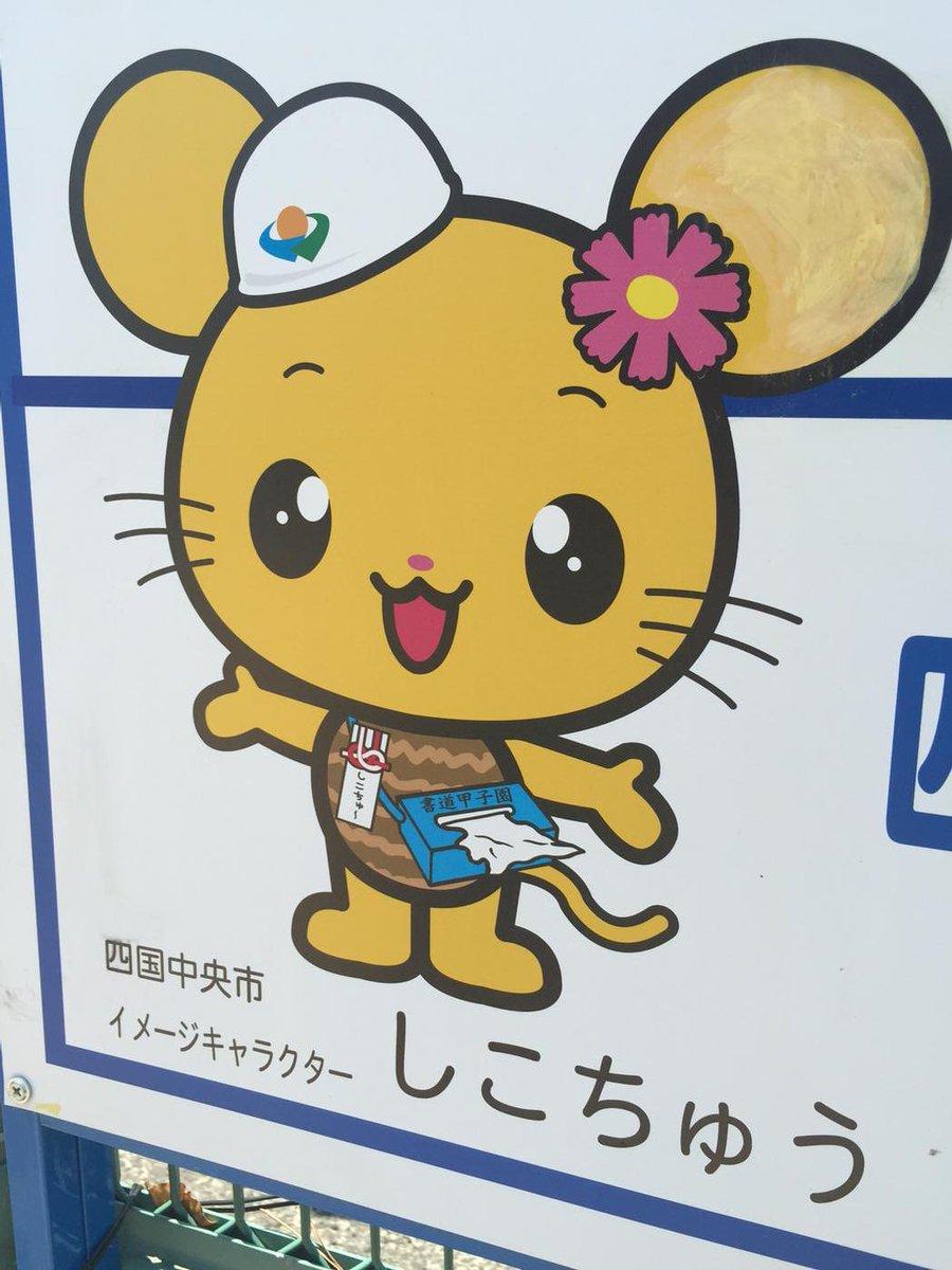 愛媛県のゆるキャラ「しこちゅう」は箱ティッシュを常備…ヤバいと話題