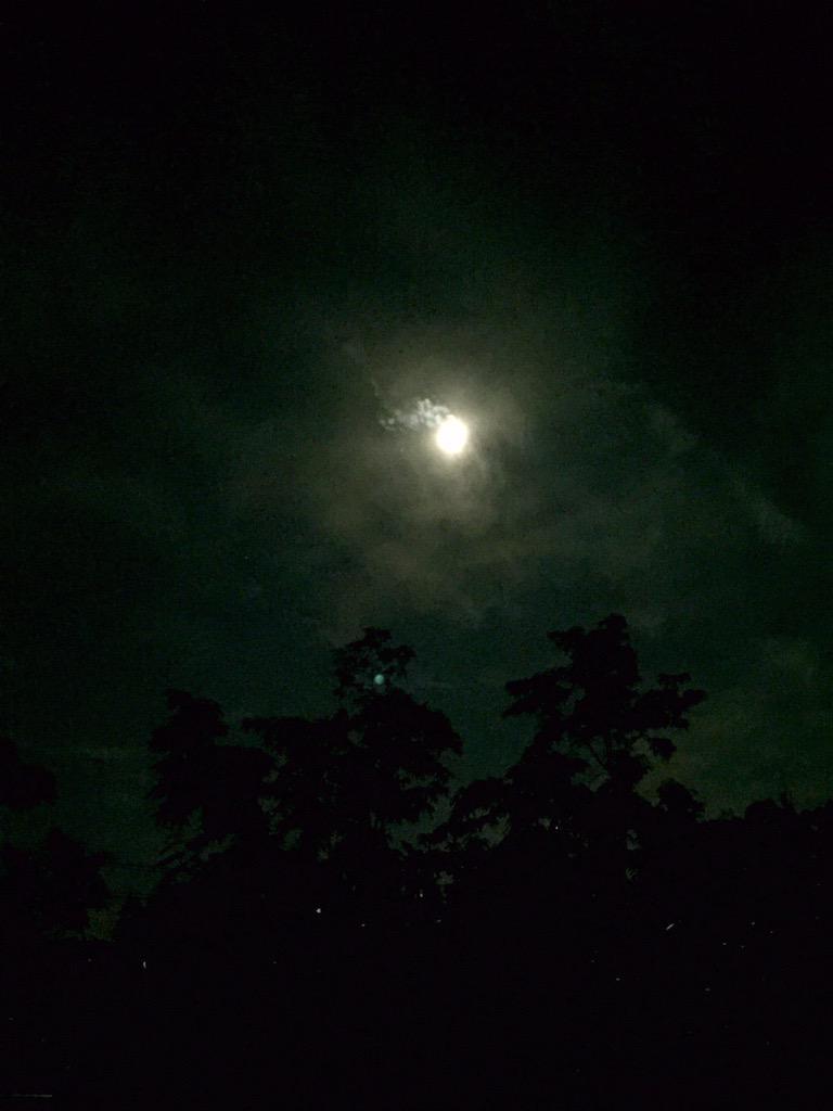 宇宙ステーションは回るわ、ソーラーインパルスは人騒がせだわ、満月は煌々と光るわ、今夜は何かスペシャルなの? http://t.co/eLVBwgSMpx