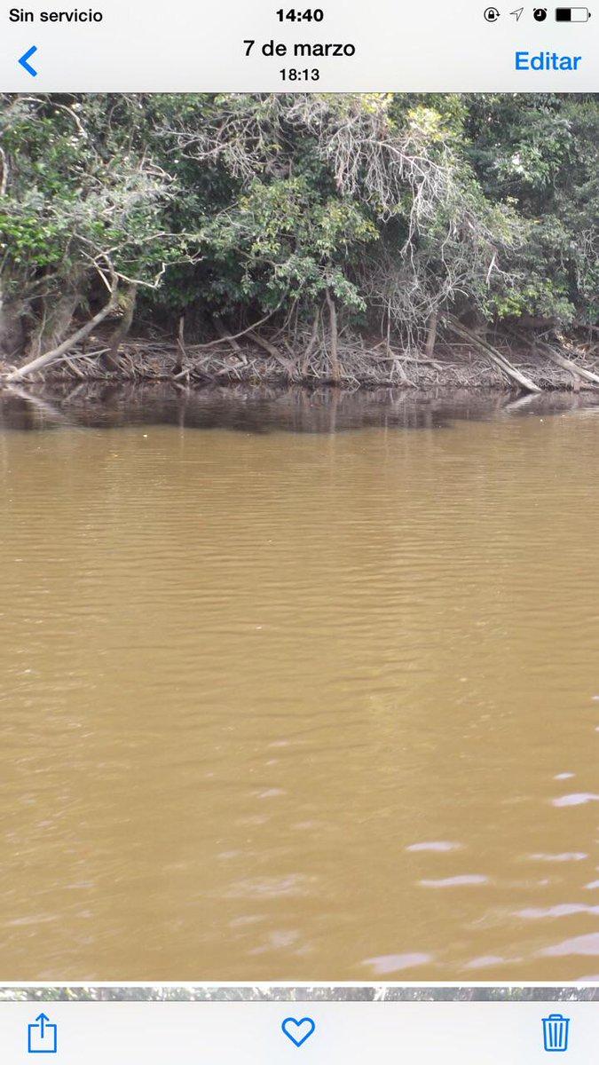 Mineria ilegal acaba con el parque Nacional Canaima CGcD071WoAAOv06