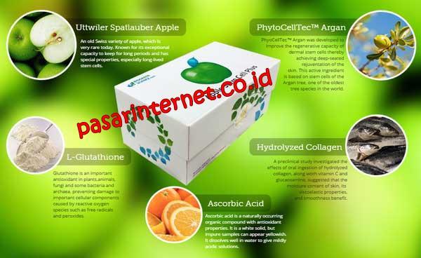 APA itu Apple Stem Cell