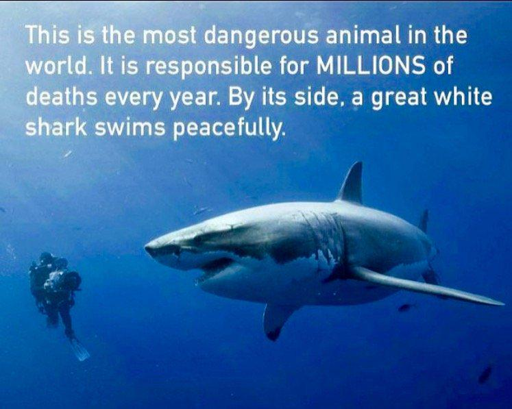 Richard Branson On Twitter Quot This Is The Most Dangerous