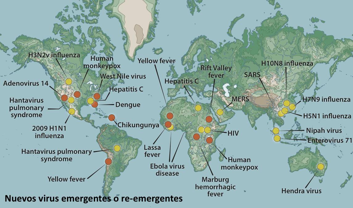 ¿Por qué surgen nuevas infecciones virales? evolución + globalización + medio ambiente + origen animal #microMOOC http://t.co/yjiu1Zi5nr