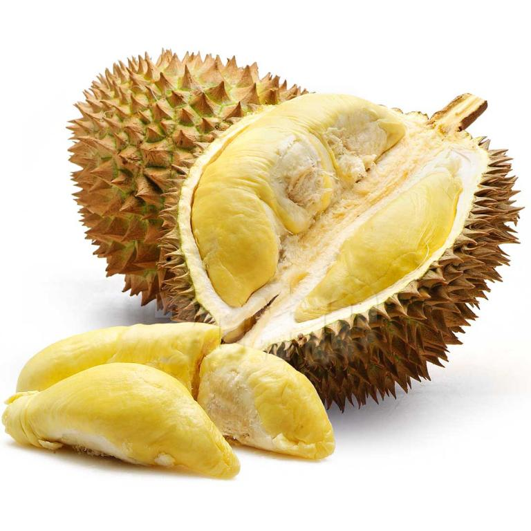 Safra singapore on twitter its durian galore this season join safra singapore on twitter its durian galore this season join us and indulge on a 1 day durian feast more httptcjfh4xlvyy travel ccuart Image collections