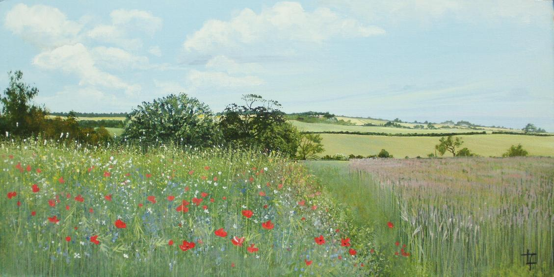 Here's to the farmers of Northumberland who plant these margins of wildflowers for bees, birds, wildlife and artists! http://t.co/KfJ9DI4tEp