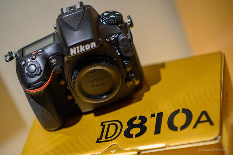 D810A is Here! Nightime fun, here I come @NikonUSA #nikonambassador http://t.co/DtUhsmgkzu http://t.co/RLRgUzsfGT