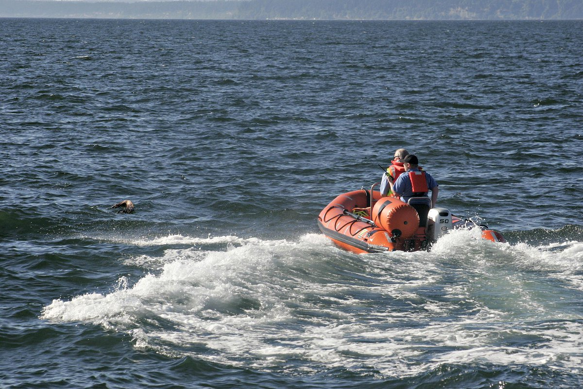 mukilteo beacon on twitter search and rescue off mukilteo coast