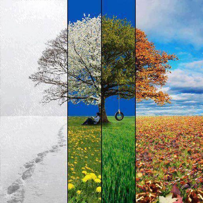 Картинки зима осень весна, картинки бегать прикол