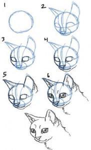How To Draw On Twitter تعلم رسم قطة بأربع طرق تعليم الرسم