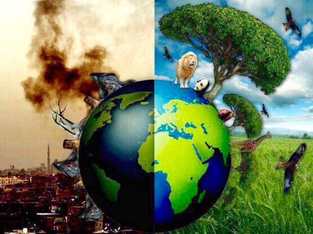 """""""Estamos casi a tiempo de elegir un cambio. Aunq hay daños irreversibles"""" #DiaMundialdelMedioAmbiente @GreenpeaceArg http://t.co/XGCTPBwWAe"""
