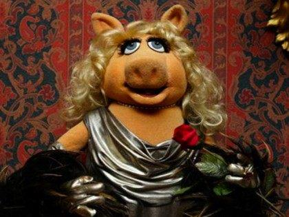 MSNBC resorts to asking Miss Piggy if she's pro-choice
