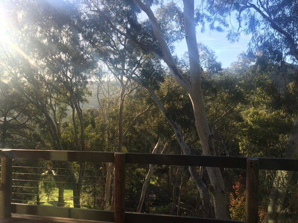 Hi all - glorious winter morning here in Adelaide - looking forward to  #satchatoc with @jenniferabrams http://t.co/6Nz5ysf2Lz