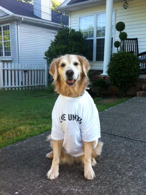 Tomorrow is @UnitedWay Nat.'l #DayofAction. Wear your #LIVEUNITED t-shirt & share your pic w/ us. http://t.co/xXn2dy8d5P