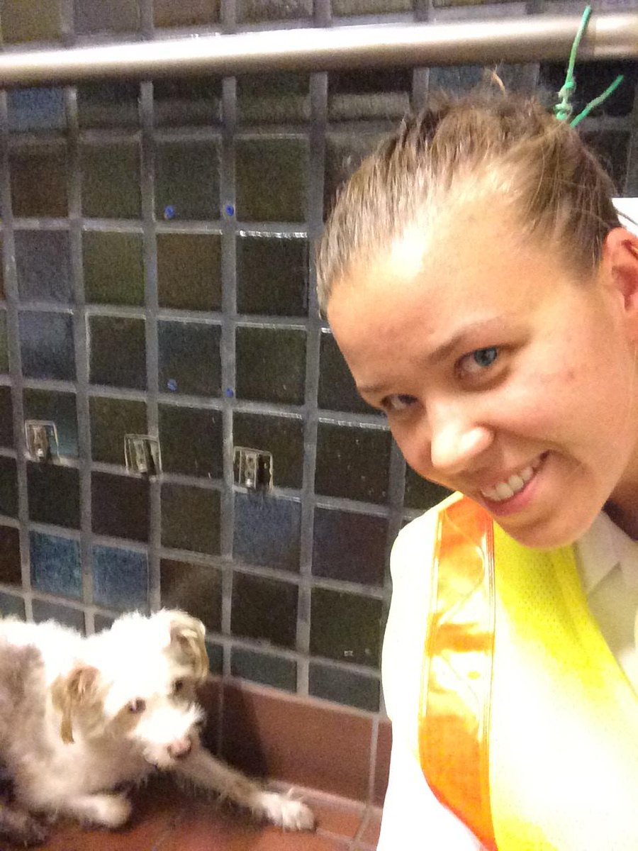 #MBTA #GreenLine Inspector Tara Egan rescued a lost puppy from the tracks at Park St today http://t.co/0zKhCL5ZxX