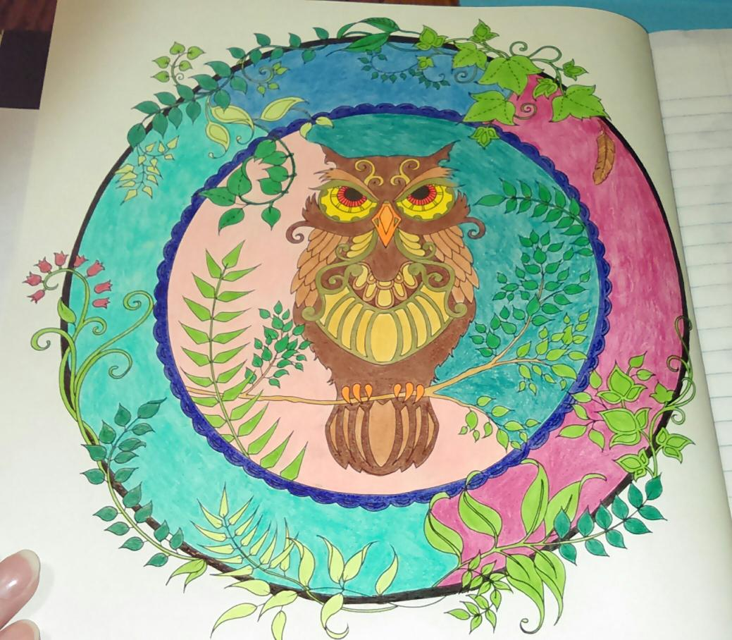 Heres My Latest Finished Owl Page I Colored In EnchantedForest Coloring Book Johannabasford Tco U1k8DnrJ4w