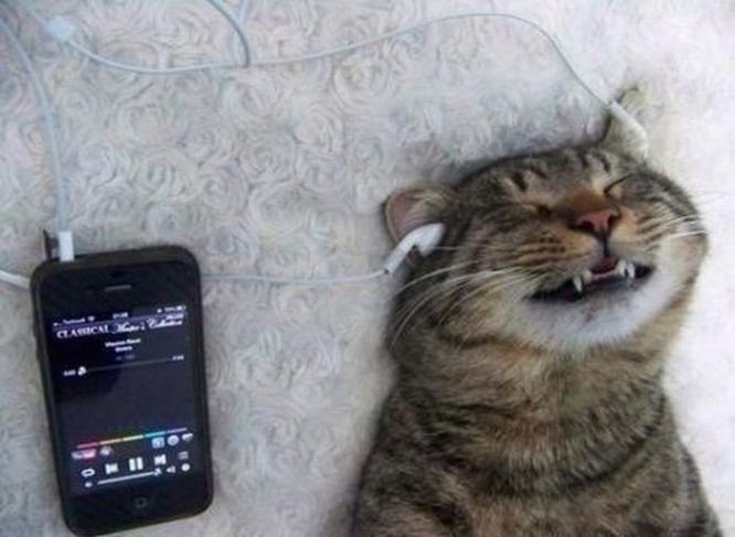 Скачать музыку из вк онлайн
