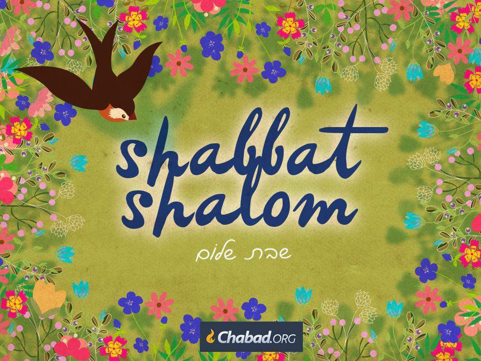 Chabad on twitter shabbat shalom from your friends at chabad chabad on twitter shabbat shalom from your friends at chabad for local candle lighting times httptcjt5fwoifq httptpxjb49gnwo thecheapjerseys Image collections
