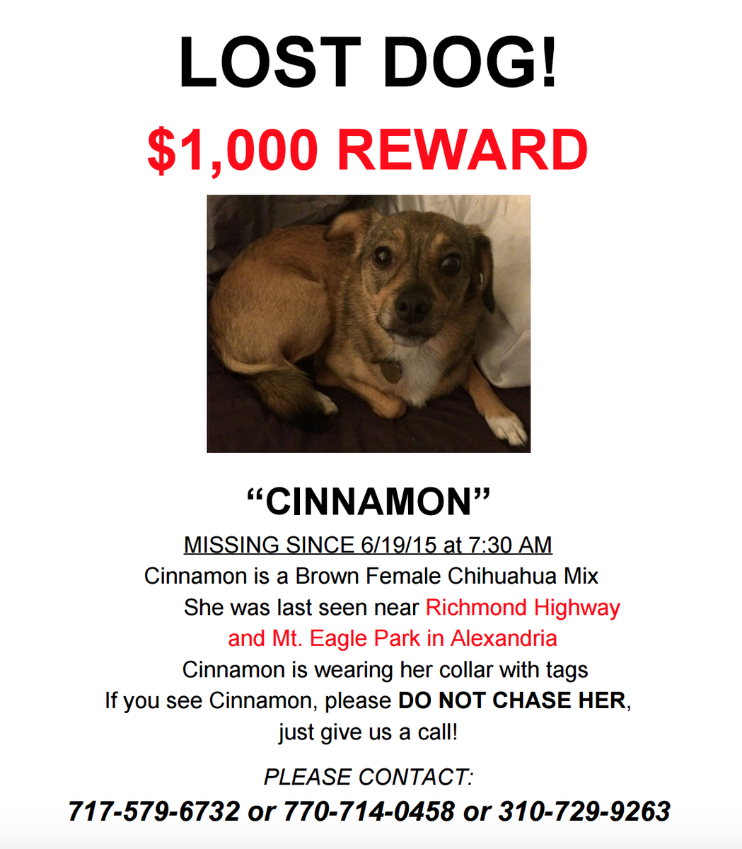 FYI - There is now a $1000 reward to #findcinn | If you see her in the Huntington/Alexandria area, please call. http://t.co/80omsgNCE7