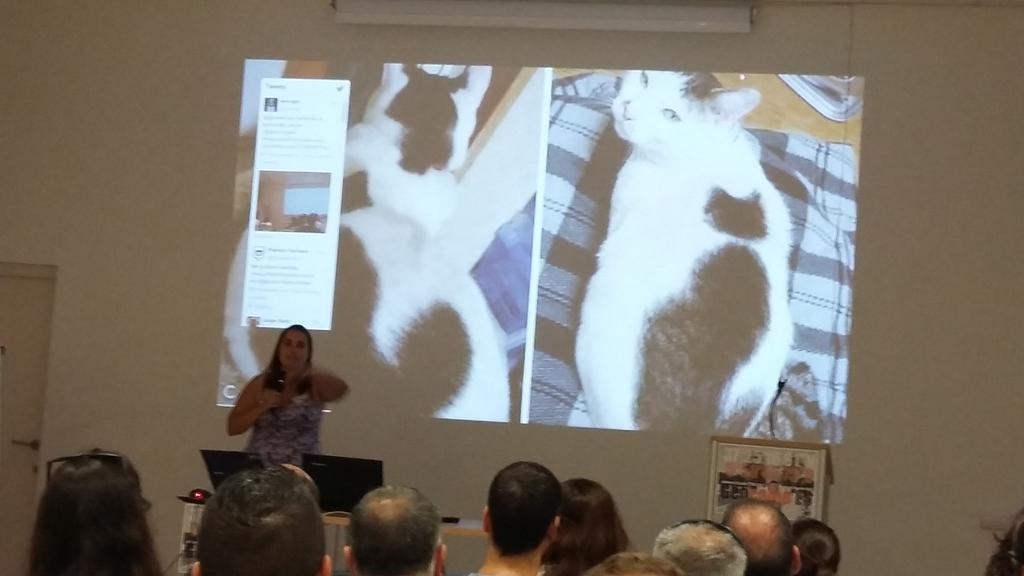 @delawen hablando de metadatos en #geocampes http://t.co/Zg6ANg2Frr