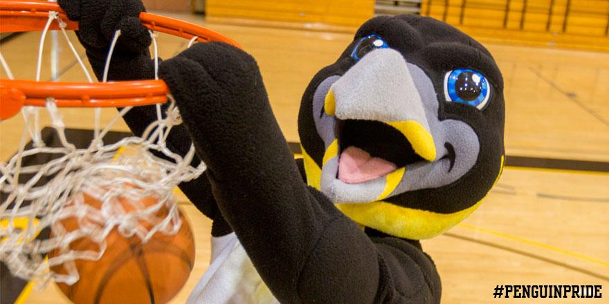 dominican athletics on twitter chilly the penguin has been named