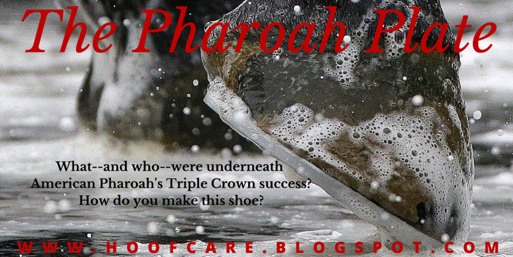 Hoof Blog reveals what lies beneath @amer_pharoah success. Literally. http://t.co/OAZ47lEGoS Shoe news! http://t.co/lmCvP0N8Ju
