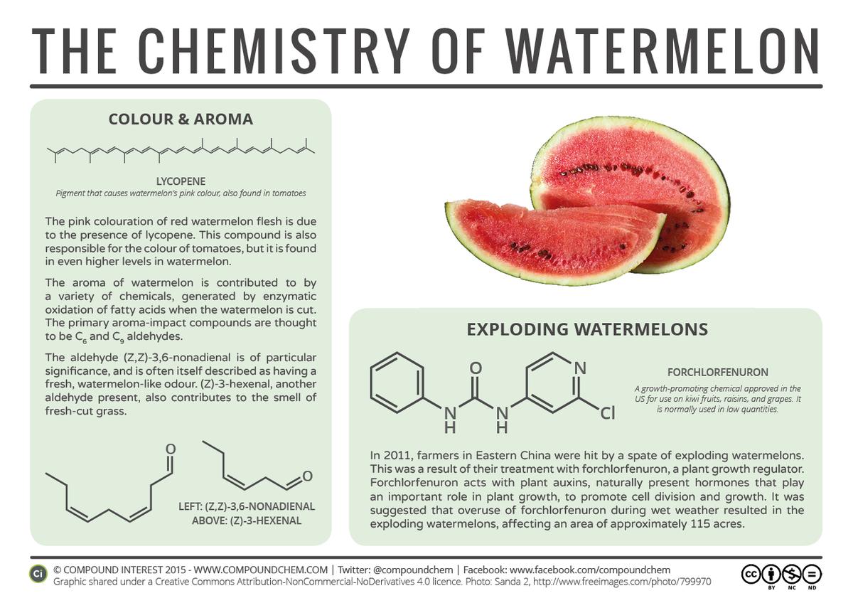 the taste of watermelon analysis