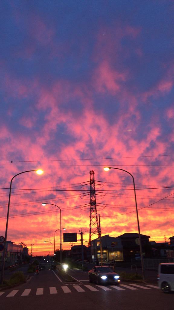 昨日 夕焼けの空をUPした所「UFOが写ってる」との声多数 再度確認したら他の写真にも 写り狂ってたのでUPしときます (高速で動いてるのか 結構短いスパーンで連写したのに 一枚一枚居る場所が変わっていますね) pic.twitter.com/MnIrebGjCD