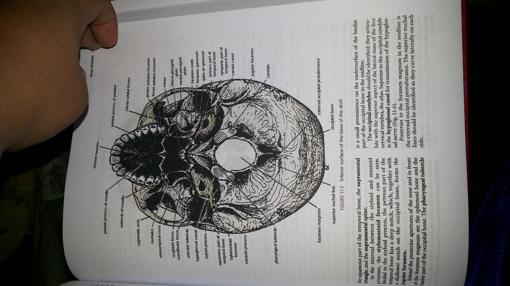 book Encyclopedia of Heavy