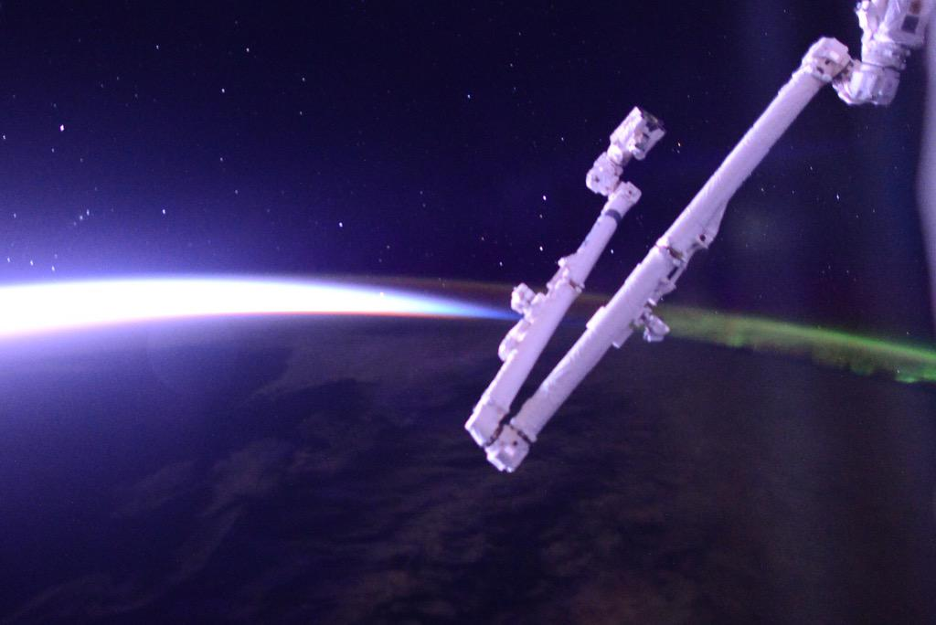 the importance of canadarm 1 and