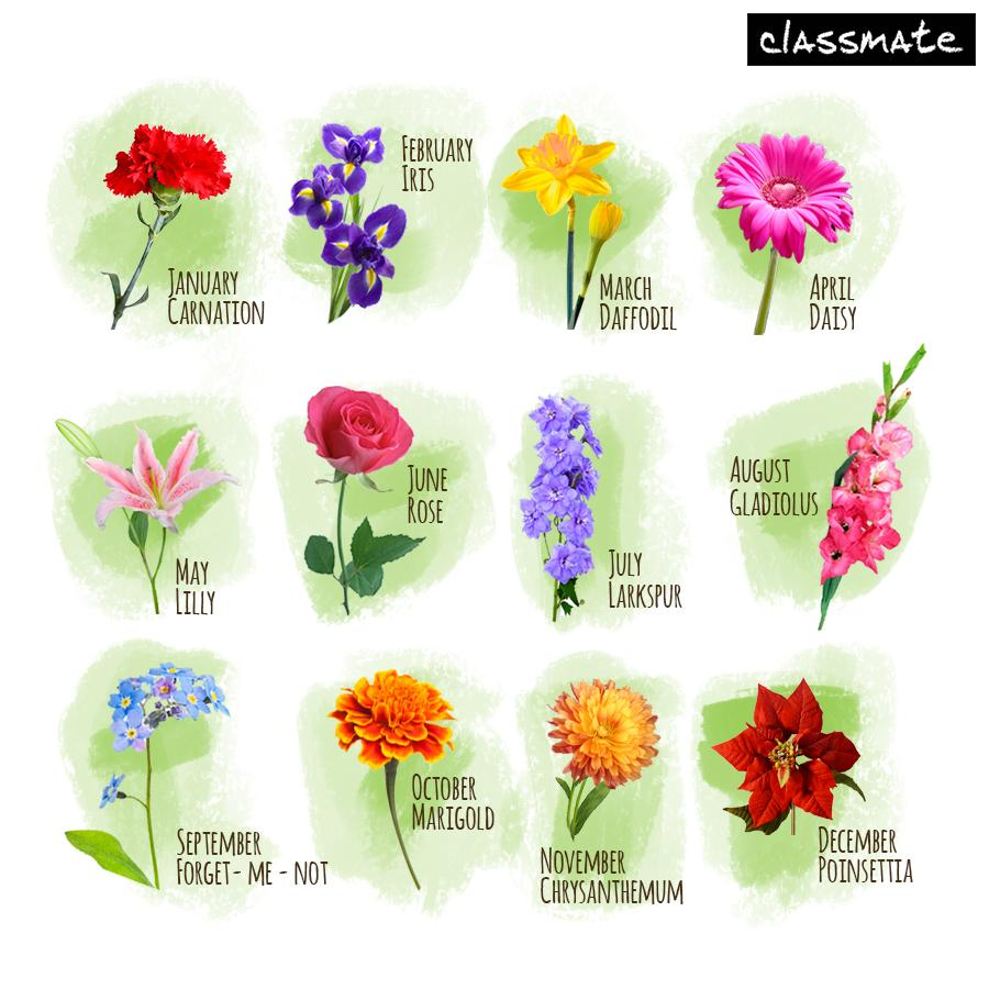 "Flowers Of Each Month: Classmate On Twitter: ""Find Your Birth Month And Comment"
