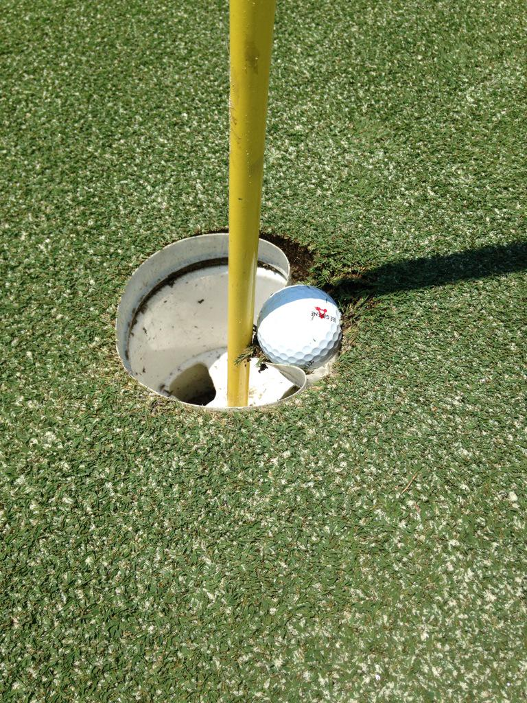 Unplayable lie?? RT @MiniTourProblms: Damnedest thing I've ever seen on a golf course http://t.co/IVsVWOpOMW