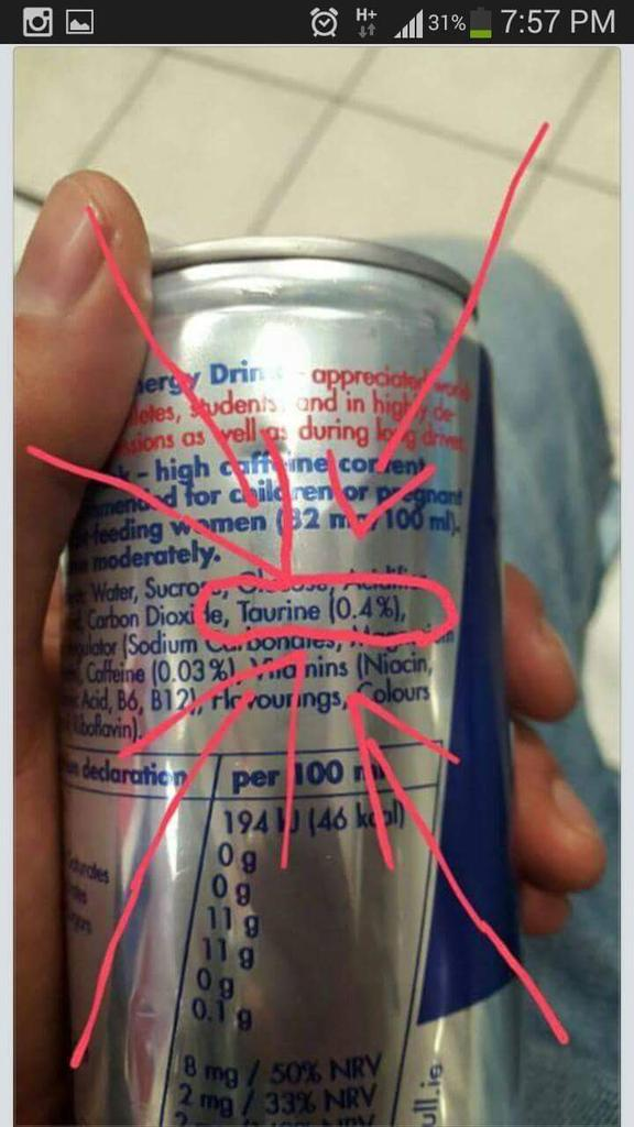 nutrition - Does Red Bull Energy Drink contain sperm from