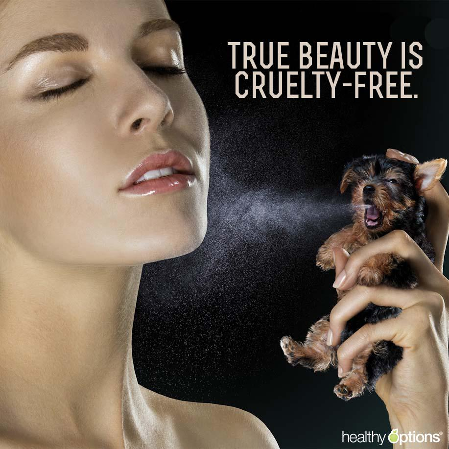 animal rights animal testing right The case for animal rights getty images americans tend to think animals should have at least some of the same rights as people, according to a recent gallup survey.