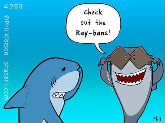 ray ban marine
