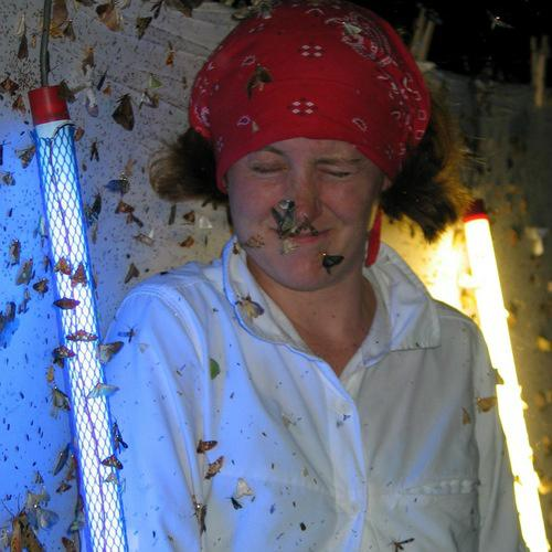 @jennarosaa - Here you go - as requested! #distractinglysexy bug collecting! http://t.co/zwa3jzuwNK