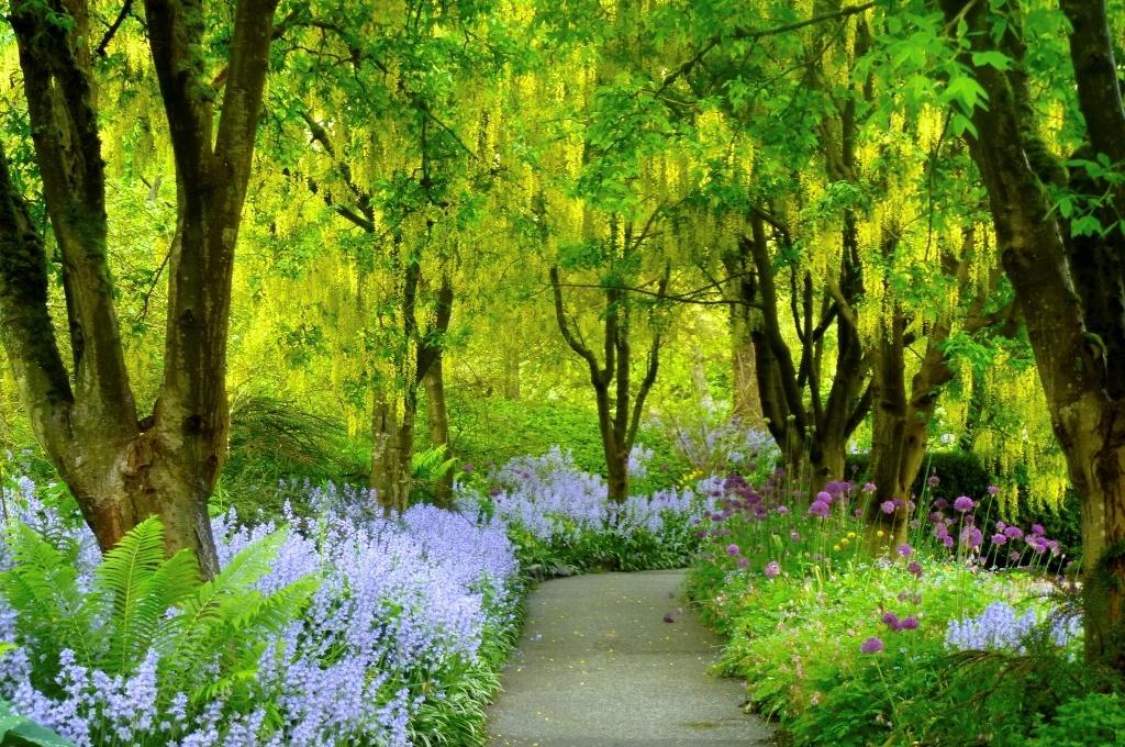 Ubc Botanical Garden On Twitter Visit 5 Gardens For Only 25 Gardendays June 19 21